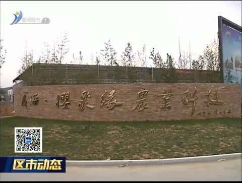 临港区:严把质量树品牌 夯实产业赢市场