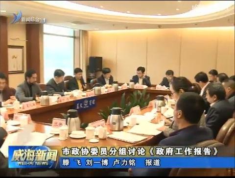市政协委员分组讨论  审议《政府工作报告》